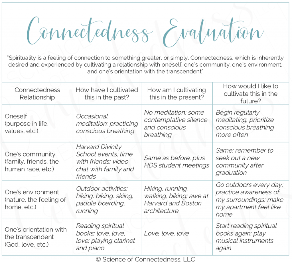 Connectedness Evaluation filled out with examples